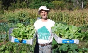 Cam lettuce sml